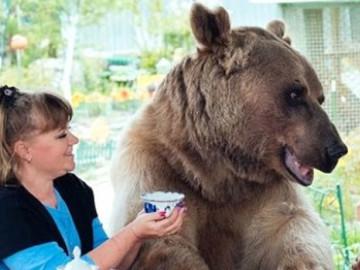 Evlerinde ayı besleyen aile